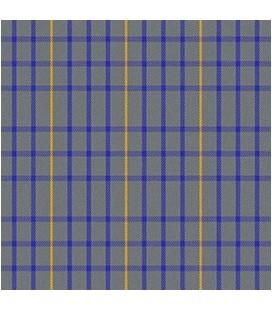 Casimir EscocC)s Gris Azul Rey Amarillo